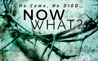 He came, He died, Now what? – Werner Vos