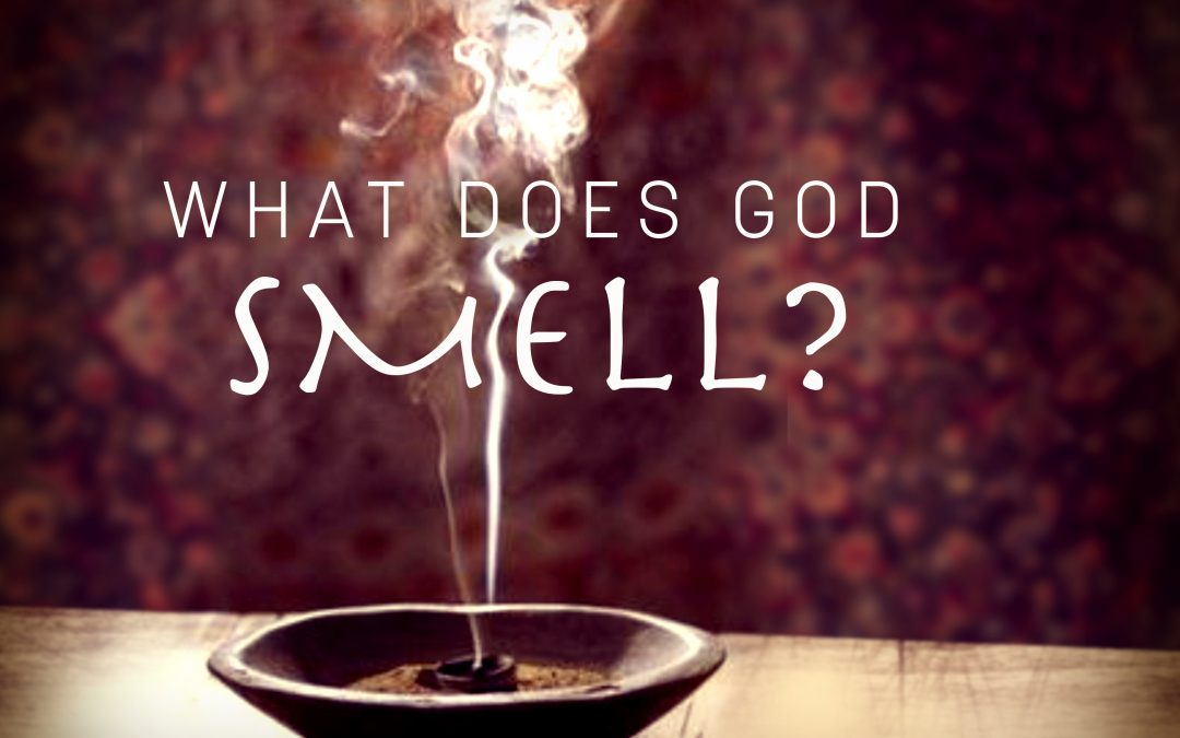 What does God smell – Marc Jarchow