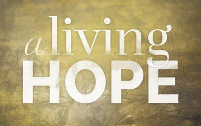 Living Hope – Werner Vos